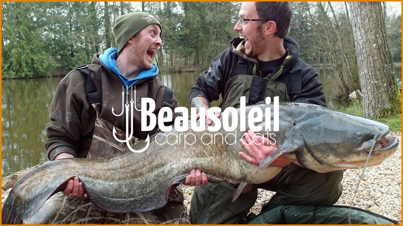 Carp fishing in france 2014 week session with multiple for Fishing in france