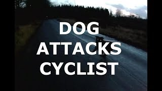 Cyclist attacked by dog