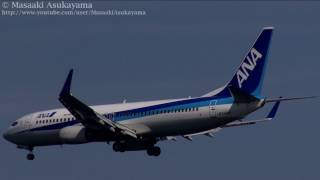 ANA - Air Nippon (EL/ANK) Boeing 737-800 JA54AN @ Haneda [20111101_1122]