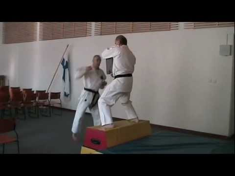 Flying kicks + other power stuff. Shukokai karate Oulu, Finland 空手 कराटे কারাতে  카라테 الكاراتيه Image 1