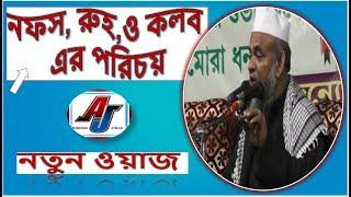 নফস, রুহ,ও কলব এর পরিচয়( নতুন ওয়াজ ) Maulana Forid Uddin Al Mubarok Bangla New waz