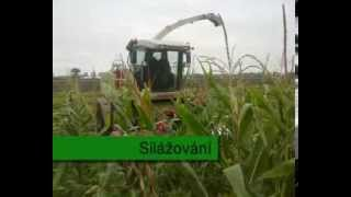 Střední Zemědělská škola Poděbrady - Polní Praxe 3.A