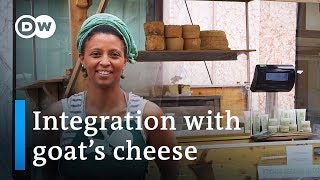 Making cheese in the Alps - a story of integration   DW Documentary