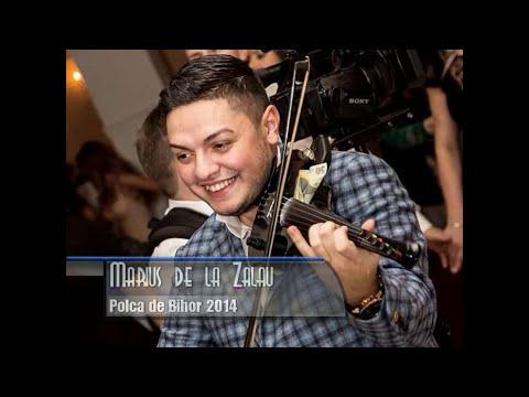 Marius de la Zalau - Polca de Bihor 2014