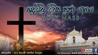 Morning Holy Mass - 29-07-2020