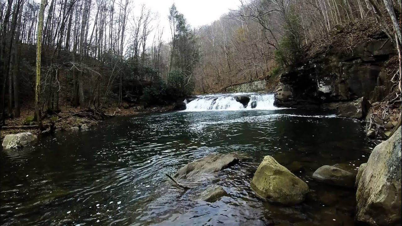Fly fishing west virginia fishing cave for Trout fishing in wv