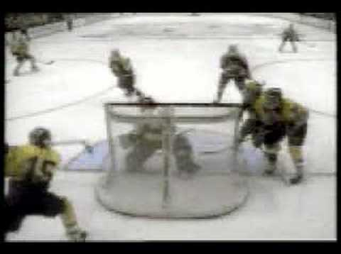 Amazing Ice Hockey Goal