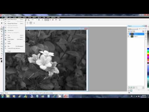 Corel PHOTO-PAINT X5 - How to keep only part of an image in color