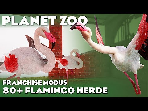 PLANET ZOO 80+ FLAMINGOS Planet Zoo Deutsch Franchise #27