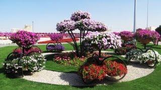 Dubai Miracle Garden  World's Largest Natural Flower Garden, Dubailand