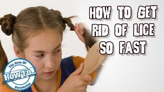 How to Get Rid of Lice So FAST