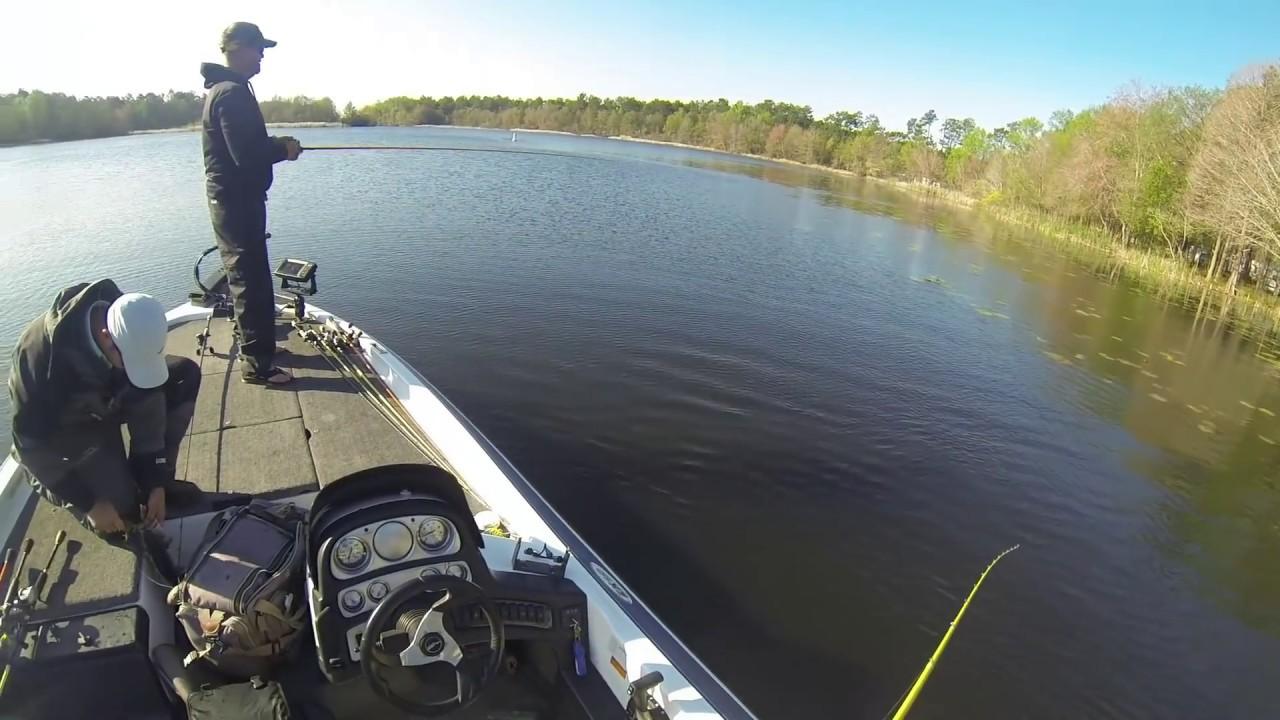 Lake seminole georgia march 2014 bass fishing fishing dome for Lake seminole fishing