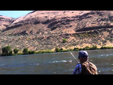 Deschutes river washington for Salmon fishing near me