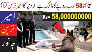 THIS DOG HAS 100 MILLION DOLLARS | RICHEST ANIMALS IN WORLD | URDU | HINDI
