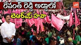 TRS Craze In Revanth Reddy Kodangal Constituency | Telangana Congress | KTR | CM KCR
