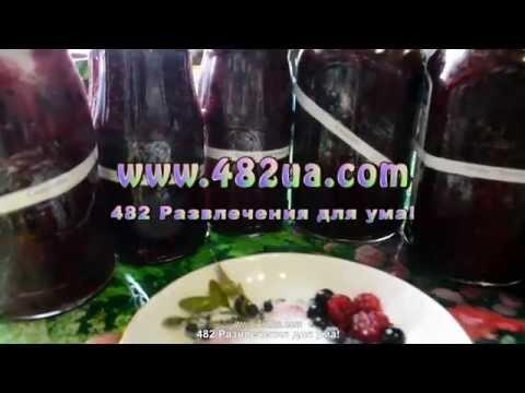 Витамины черника, малина, черная смородина, оригинальный рецепт, 482 развлечения для ума!
