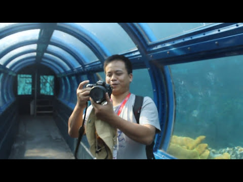 Aquarium Pulau Putri, Kep. Seribu