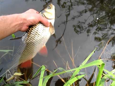 снасти для рыбалки в мариуполе