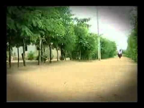Pepe  Moreno  -  Nova  Música  (um  Cego  E  Dois  Filhos  Aleijados) video