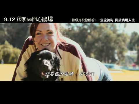 9.12《我家有個開心農場》精彩片段搶鮮看|一隻流浪狗,開啟農場人生