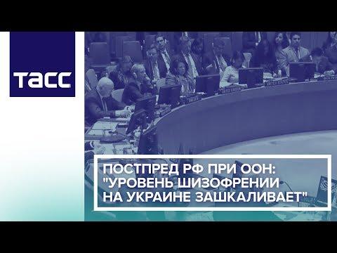 """Постпред РФ при ООН: """"Уровень шизофрении на Украине зашкаливает"""""""