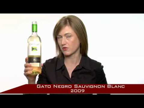 Happy sipping of Gato Negro Sauvignon Blanc from Viña San Pedro in the U.S.