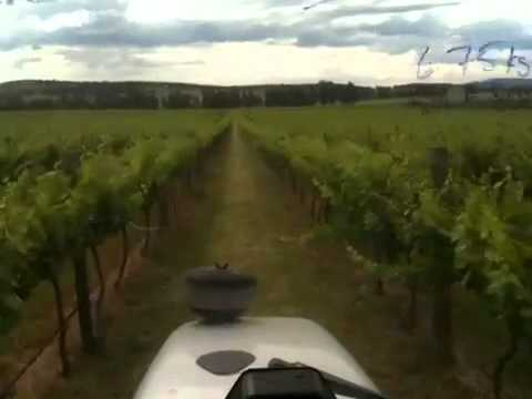 Grapevine spraying at Canowindra NSW Australia