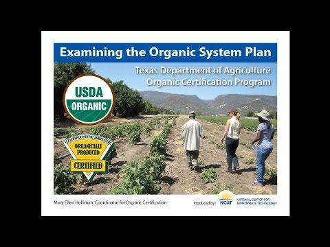 Examining The Organic System Plan