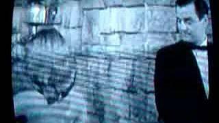 Vikki Dougan Tunnel of Love 1