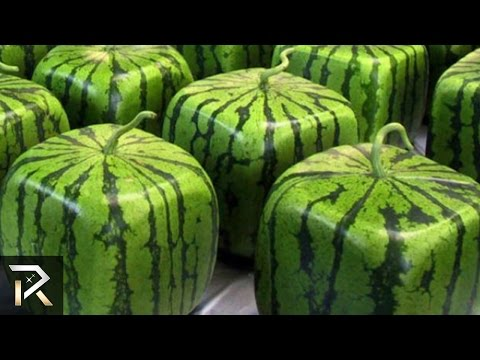9 Strangest Genetically Mutated Products