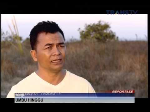 Sumba Iconic Island - Liputan Transtv Part 1