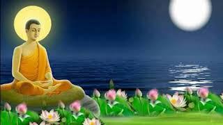 Nhạc Thiền Phật Giáo Hay Nhất Tịnh Tâm An Nhiên Tự Tại