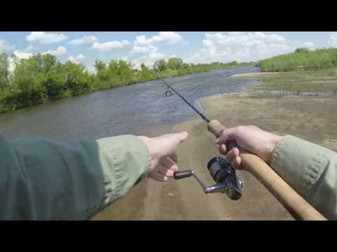 ловля рыбы дон сосна