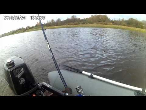 рыбалка на реке волхов с лодки