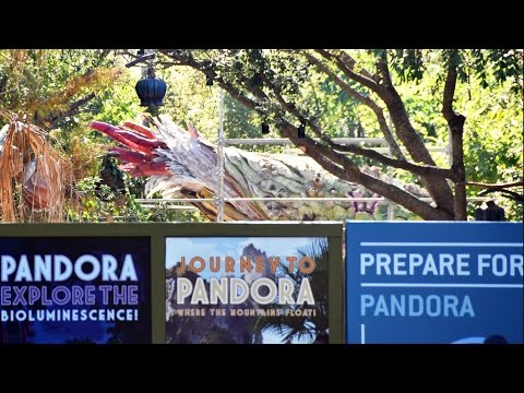 Pandora The World Of Avatar Construction Update at Disney's Animal Kingdom, Dec 2016