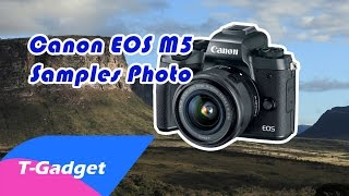 Canon EOS M5 Sample Images
