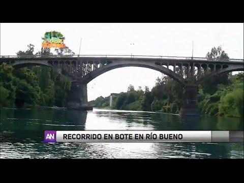 Reportaje Ahora Noticias en Río Bueno 4 enero 2016