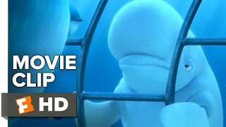 Finding Dory Movie CLIP - You