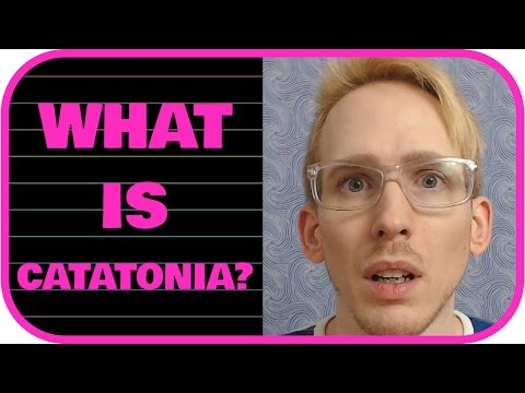What is Catatonia?