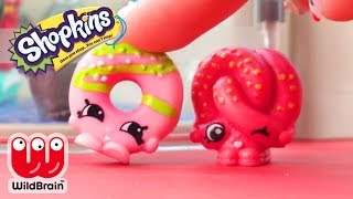 Shopkins | Toys Happy Places | Zoo Party | RaInBoW PoP 7