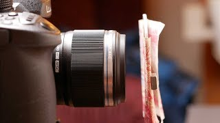 A Look At The Olympus 30mm f/3.5 Macro Lens For Micro Four Thirds Cameras