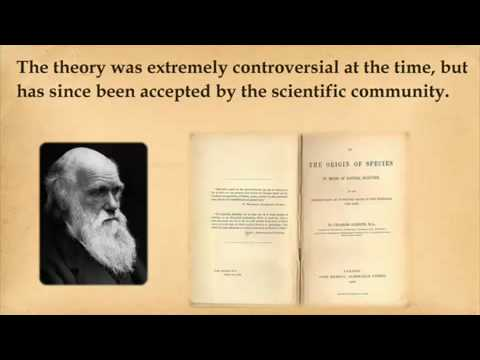 history of theory of evolution Life history theory and evolutionary anthropology kim hill life-history theory  has been developed in biology to explainthe variation in timing of fertility, growth .