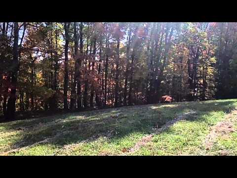 Philpott Lake Retreat-Franklin County VA ~ 88 acres LCF Group.wmv