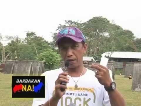 Bakbakan Na! Itanong mo kay Jap 2