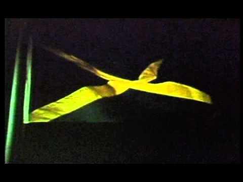 Jamaica Gains Independence - Rare footage thumbnail