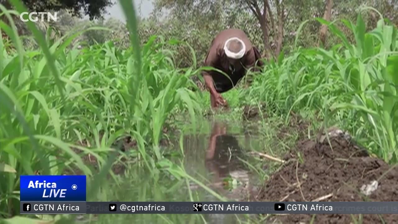 CGTN: Ethiopia's Mega Dam Spat Could Lead to a Regional Crisis - ታላቁ የህዳሴው ግድብ ክልላዊ ቀውስ ሊያስከትል ይችላል