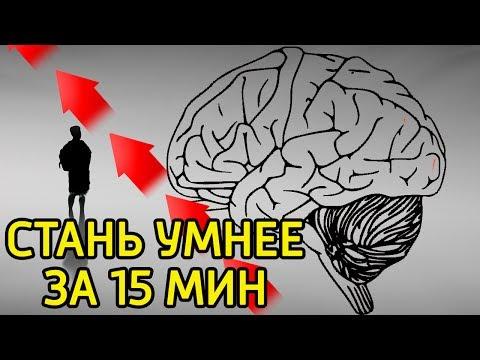 10 идей как за 15 минут заставить мозг работать и думать–Как быстро повысить работоспособность мозга
