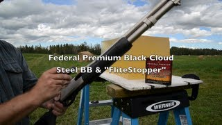 Ammo Test! 12 Gauge BB - Federal Black Cloud Steel
