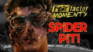 Fear Factor Moments  Tarantula Pit