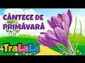 Colaj Cântece De Primăvară 60 Minute TraLaLa mp3